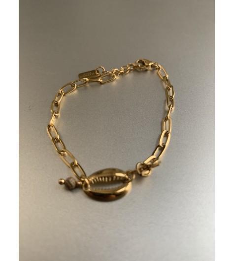 Bracelet Acier - Cauri avec étoile sur chaine maillon moyen